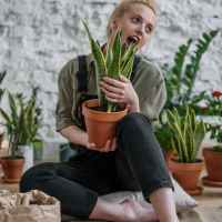 How Gardening Can Boost Your Wellbeing